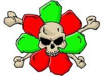 Вирус Snatch опасен для пользователей ICQ