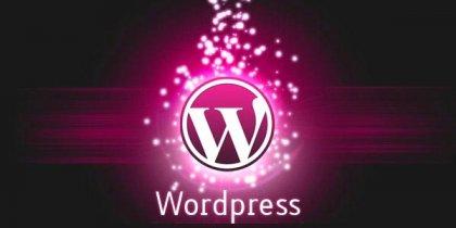 WordPress – статистические данные